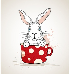 White rabbit in a red cup vector image