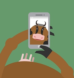 Selfie cow Animal is photographed on phone vector image