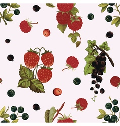 Background with berries vector