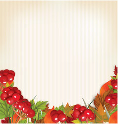 autumn background with viburnum leaves and grass vector image vector image