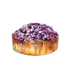 Watercolor blueberry cake with coconut vector image vector image