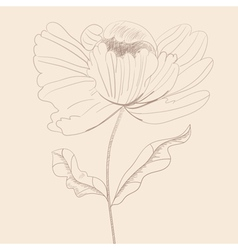 stylized flower vector image
