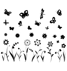 Flowers butterflies and dragonflies vector image