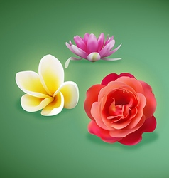 Flowers preview vector