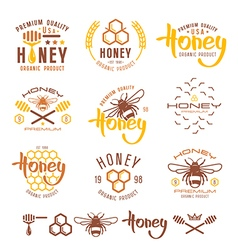 Set of honey labels badges and design elements vector image vector image