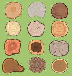 Wood slice texture wooden tree life age vector
