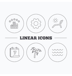 Palm tree waves and deck chair icons vector