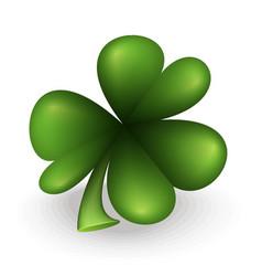 green clover leaf vector image