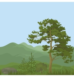 Seamless mountain landscape with trees vector image vector image
