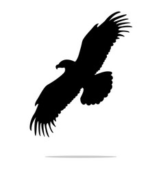 eagle bird black silhouette animal vector image vector image