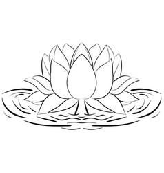 lotus sketch flower design elements vector image
