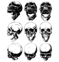 Realistic cool detailed graphic skulls set vector