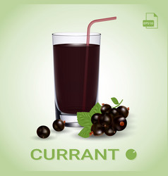 Set of blackcurrant juice and fresh ripe berries vector