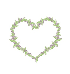 Fresh acanthaceae plants in a heart shape vector