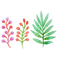 Decorative watercolor floral elements vector