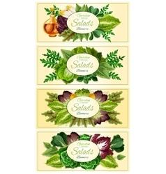 Fresh lettuce and green salad leaves banner set vector