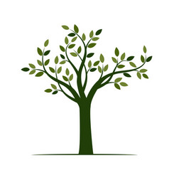 shape of green tree with leaves vector image vector image
