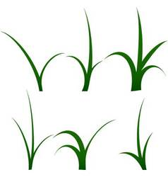 Stalk of grass set vector image vector image
