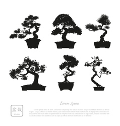 Bonsai set Black silhouette of a bonsai vector image