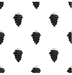 Bunch of wine grapes icon in black style isolated vector