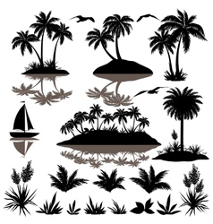 Tropical set with palms silhouettes vector image vector image