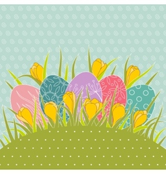 Easter eggs in grass and yellow crocuses vector