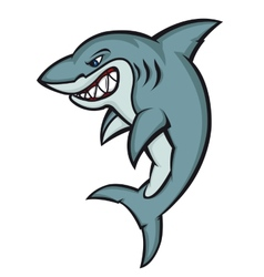 Danger shark vector image