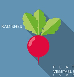 Radish flat icon with long shadow vector