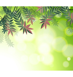 A stationery with many leaves vector image vector image