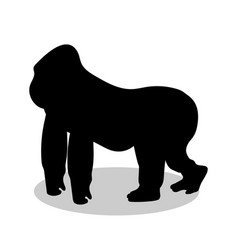 gorilla monkey primate black silhouette animal vector image