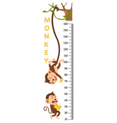 Meter wall with monkey vector