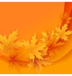 Autumn maples falling leaves background vector image vector image