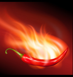Burning chilli pepper vector