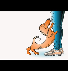 Dog and man image vector image