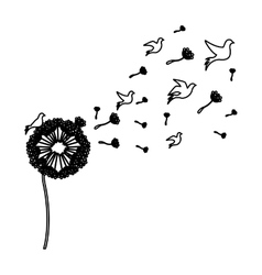 Black silhouette dandelion with fly birds vector