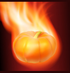 Burning pumpkin on dark background vector