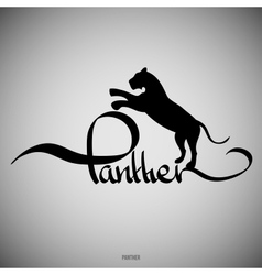 Panther calligraphic elements vector
