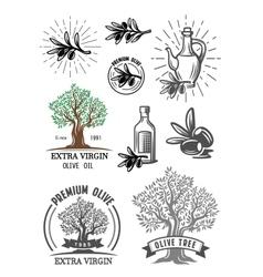 Color olive symbol vector