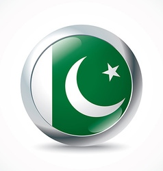 Pakistan flag button vector