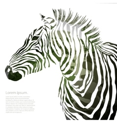 Animal of military zebra vector
