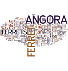 The angora ferret text background word cloud vector