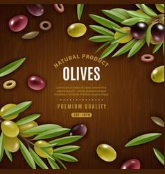 Natural olives background vector