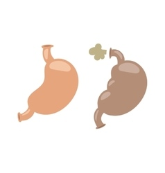 Digestive problems vector image vector image
