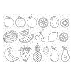 Fruit graphics outline vector