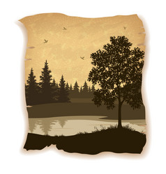 Landscape trees river and birds vector