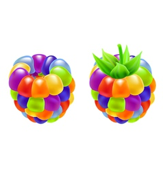 rainbow raspberry vector image vector image