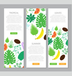 vertical banner with tropical leaves and fruits vector image