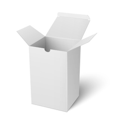 White open vertical paper box template vector image