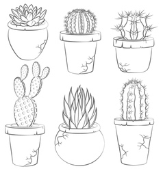 Collection of cactuses in flower pot vector image vector image