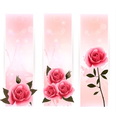 Three banners with pink roses vector image vector image